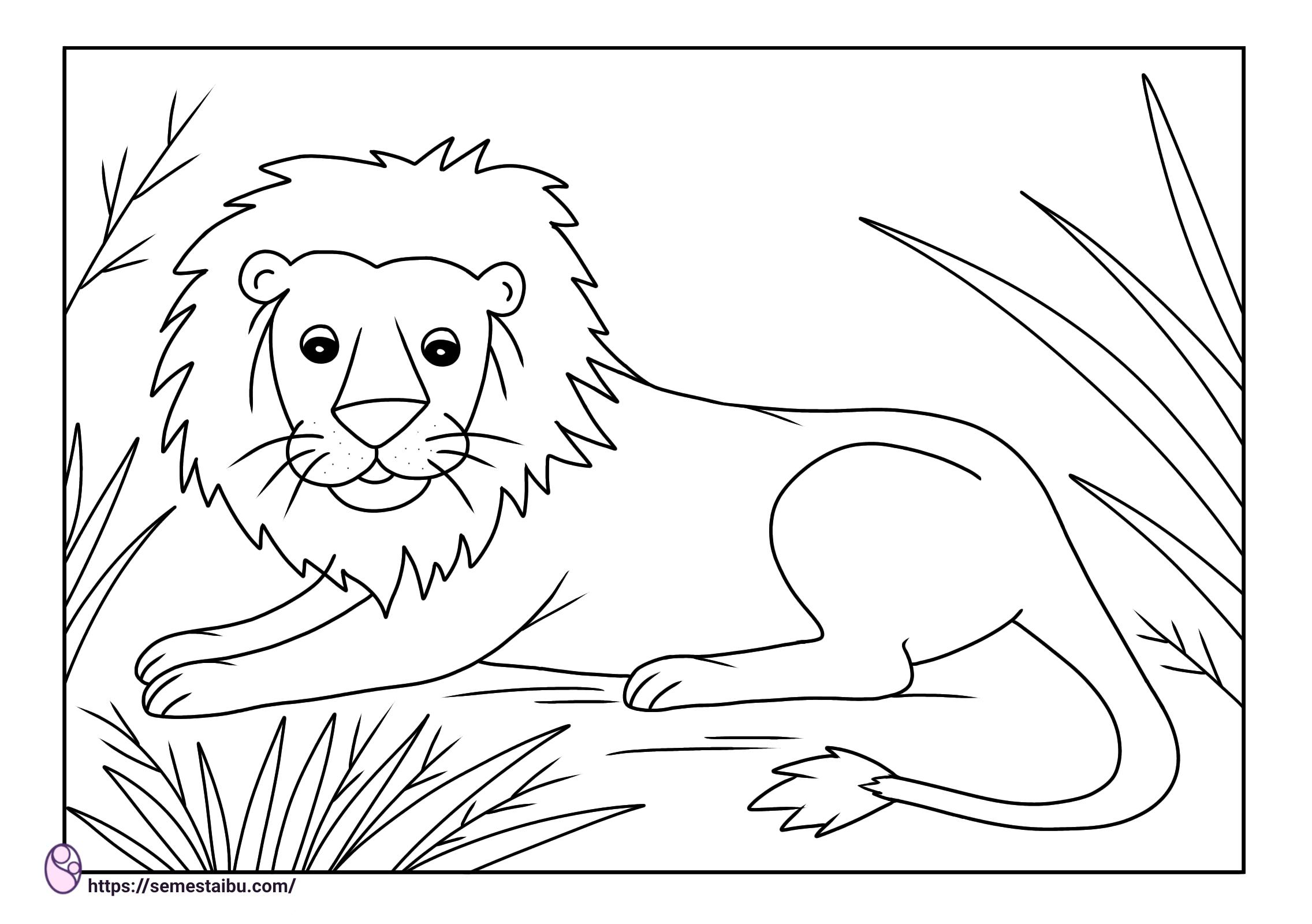 Gambar mewarnai hewan untuk anak tk - singa